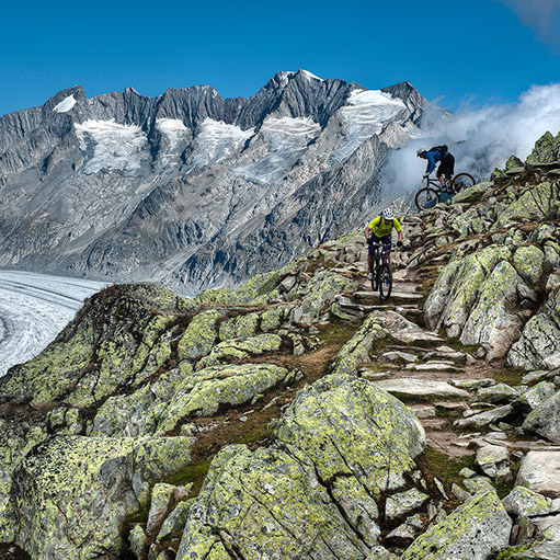 Mountainbiketour über den Bettmergrat zur Riederfurka. Blick zum Aletschgletscher